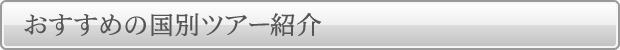 おすすめの国別ツアー紹介