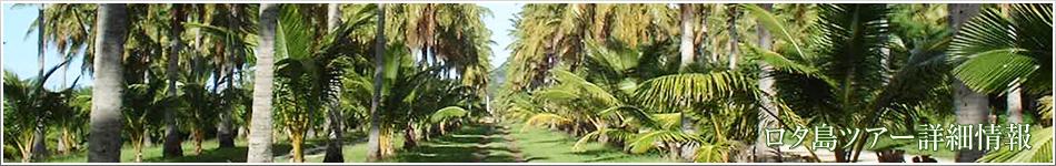 ロタ島:ツアープラン