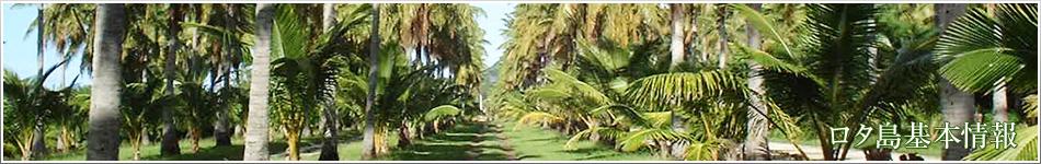 ロタ島:各種情報